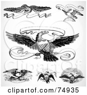 Royalty Free RF Clipart Illustration Of A Digital Collage Of Black And White Eagles And Banners by BestVector