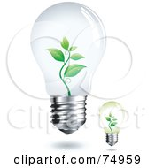 Royalty Free RF Clipart Illustration Of A Digital Collage Of Two Electric Light Bulbs With Plants Growing Inside by Anja Kaiser