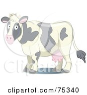 Confused Dairy Cow