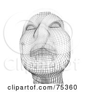 3d Wire Framed Face Over White
