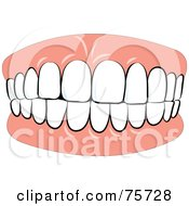 Royalty Free RF Clipart Illustration Of Denture Teeth Biting Down by Lal Perera