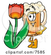 Clipart Picture Of A Beer Mug Mascot Cartoon Character With A Red Tulip Flower In The Spring
