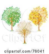 Royalty Free RF Clipart Illustration Of A Digital Collage Of A Young Tree Shown In Autumn Winter And Summer