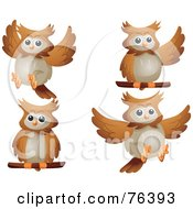 Royalty Free RF Clipart Illustration Of A Digital Collage Of A Cute Brown Owl In Different Poses