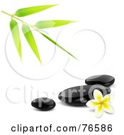 Bamboo Stem Over Black Spa Stones And A Plumeria Flower