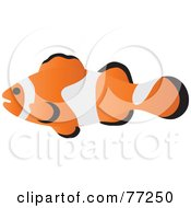 Royalty Free RF Clipart Illustration Of A Profiled Clownfish