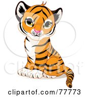 Royalty Free RF Clipart Illustration Of An Adorable Sitting Baby Tiger Cub by Pushkin