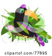 Royalty Free RF Clipart Illustration Of A Black Toucan Bird With Colorful Feathers Perched On A Hibiscus Branch