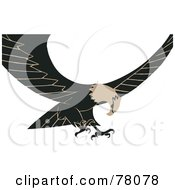Royalty Free RF Clipart Illustration Of A Tan And Black Bald Eagle In Flight Its Wings Spread