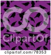 Seamless Background Of Black Bird Silhouettes On Purple