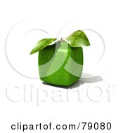 Royalty Free RF Clipart Illustration Of A Whole Cubic 3d Genetically Modified Lime Citrus Fruit