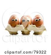 3d Egg Carton With Organic Egg Faces
