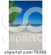 Royalty Free RF Clipart Illustration Of A 3d Yellow Floatplane At The End Of A Pier On A Tropical Beach by Frank Boston