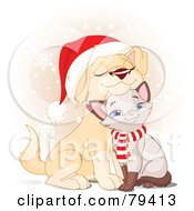 Cuddly Christmas Yellow Lab Puppy And Siamese Kitten Wearing A Santa Hat And Scarf