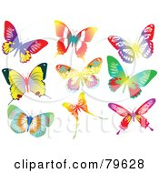 Royalty Free RF Clipart Illustration Of A Digital Collage Of Nine Vibrant Butterflies