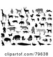 Royalty Free RF Clip Art Illustration Of A Digital Collage Of Silhouetted And Black And White Animals