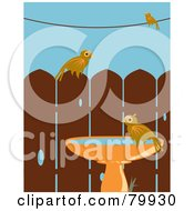 Royalty Free RF Clipart Illustration Of Three Birds Perched On A Wire Fence And Bird Bath In A Back Yard