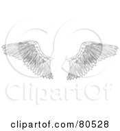 Royalty Free RF Clipart Illustration Of A Pair Of Feathered Bird Wings by tdoes