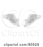 Royalty Free RF Clipart Illustration Of A Pair Of Feathered Eagle Wings by tdoes #COLLC80529-0154