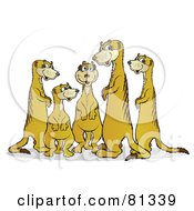 Royalty Free RF Clipart Illustration Of A Chatty Meerkat Family by Snowy
