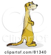 Royalty Free RF Clipart Illustration Of A Smiling Meerkat Standing And Facing Right by Snowy