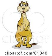 Royalty Free RF Clipart Illustration Of A Meerkat Standing And Facing Front by Snowy