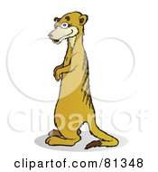 Royalty Free RF Clipart Illustration Of A Meerkat Standing And Facing Left by Snowy
