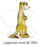 Royalty Free RF Clipart Illustration Of A Meerkat Standing And Facing Right by Snowy