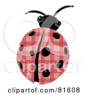 Royalty Free RF Clipart Illustration Of A Patchwork Ladybug With Black Spots by mheld