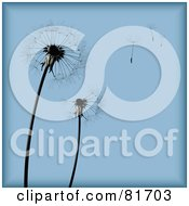 Poster, Art Print Of Blue Dandelion Seed Head Background With Pieces Blowing Away