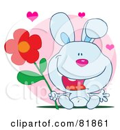 Sweet Blue Bunny Rabbit Holding A Flower Under Hearts In Front Of A Pink Circle