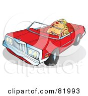 Pleasantly Plump Blond Lady Driving A Red Convertible Car