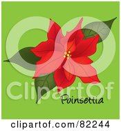 Red Poinsettia Bloom On Green With Text