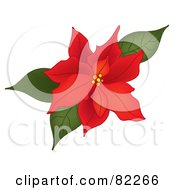 Royalty Free RF Clipart Illustration Of A Red Poinsettia Bloom With Green Leaves