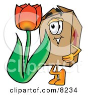 Cardboard Box Mascot Cartoon Character With A Red Tulip Flower In The Spring