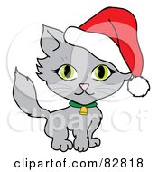 Cute Green Eyed Gray Cat Wearing A Bell And Santa Hat