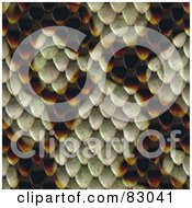 Royalty Free RF Clipart Illustration Of A Seamless Snake Skin Scale Patterned Background