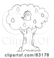 Royalty Free RF Clipart Illustration Of An Outlined Partridge In A Pear Tree