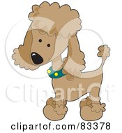 Royalty Free RF Clipart Illustration Of A Cute Apricot Poodle Puppy Dog Wearing A Green Collar With Yellow Spots And Sporting A Puppy Clip by Maria Bell