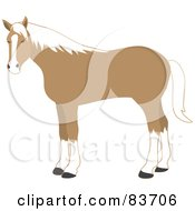 Royalty Free RF Clipart Illustration Of A Standing Tan And White Horse