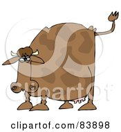 Brown Cow Holding His Tail Up And Preparing To Poop