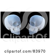 Royalty Free RF Clipart Illustration Of Two White 3d Human Skulls Over Black by Mopic