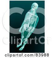 Royalty Free RF Clipart Illustration Of A 3d Human Skeleton Xray by Mopic