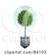 Royalty Free RF Clipart Illustration Of A Mature Tree Growing Inside Of A Transparent 3d Light Bulb