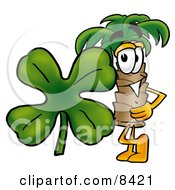 Palm Tree Mascot Cartoon Character With A Green Four Leaf Clover On St Paddys Or St Patricks Day