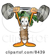 Clipart Picture Of A Palm Tree Mascot Cartoon Character Holding A Heavy Barbell Above His Head