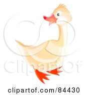 Royalty Free RF Clipart Illustration Of A Happy White Goose Looking Back