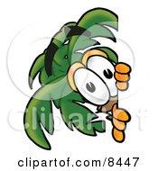 Palm Tree Mascot Cartoon Character Peeking Around A Corner