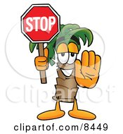 Palm Tree Mascot Cartoon Character Holding A Stop Sign