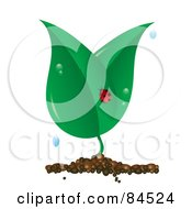 Royalty Free RF Clip Art Illustration Of A Ladybug On A Dewy Plant On White by Pams Clipart